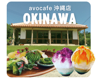 avocado沖縄店